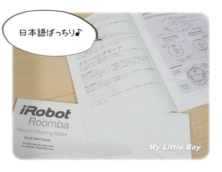 Roomba004.JPG