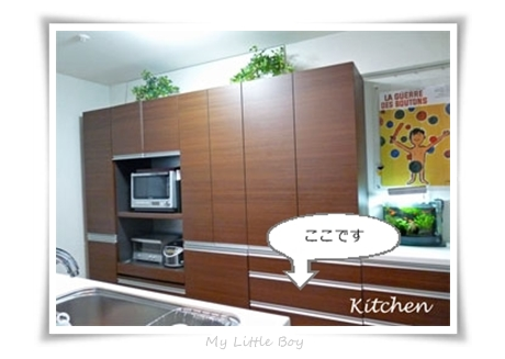 img671_kitchen01.jpg